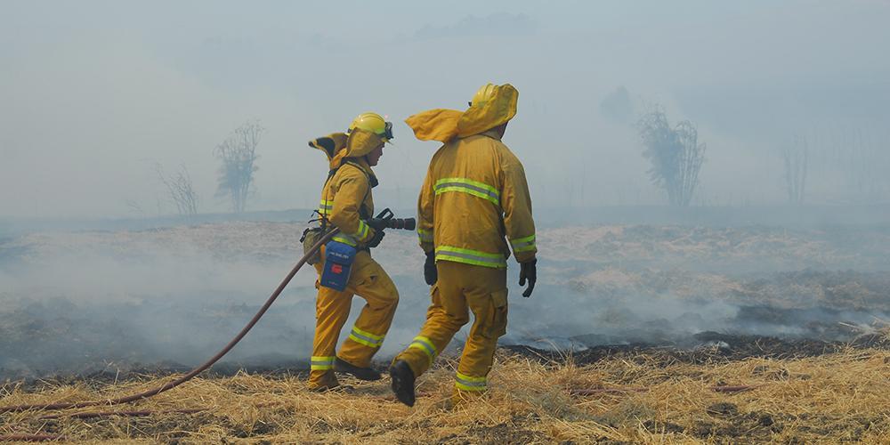 Feuerwehrleute auf einem abgebrannten Gelände